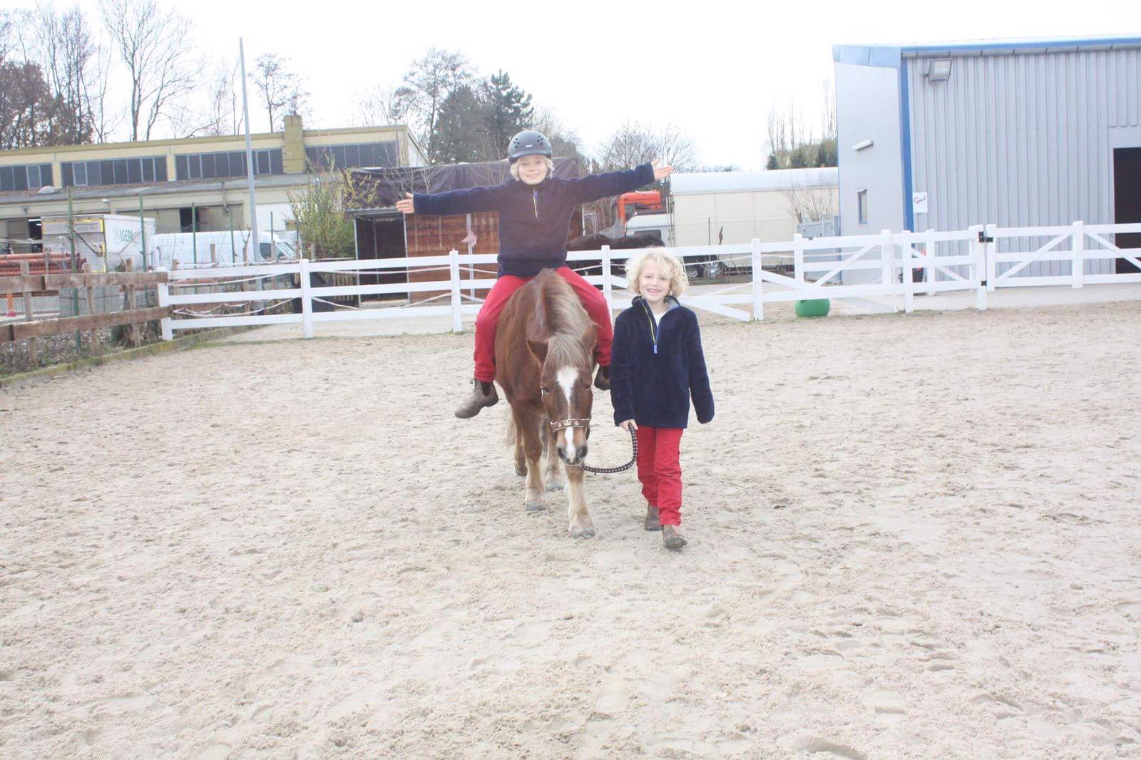 © Ponyschule-Arnum.de